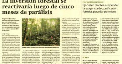La inversión forestal se reactivaría luego de cinco meses de parálisis.